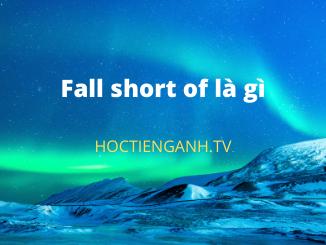 Fall short of là gì