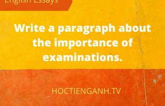 Write a paragraph about the importance of examinations