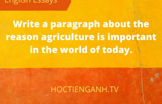 write a paragraph about the reason agriculture is important in the world of today