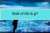 Walk of life là gì?