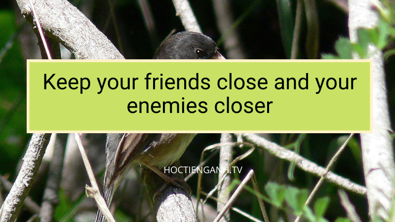 keep your friends close and your enemies closer nghĩa là gì?